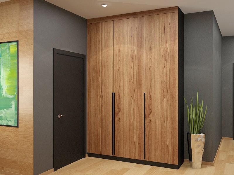 Шкаф в прихожую лофт