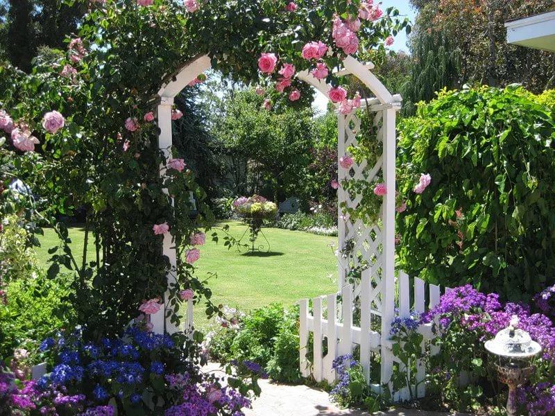 Арки для плетистых роз