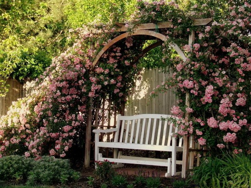 Садовые арки для вьющихся
