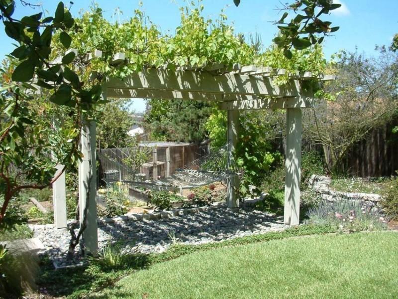 Перголы для винограда