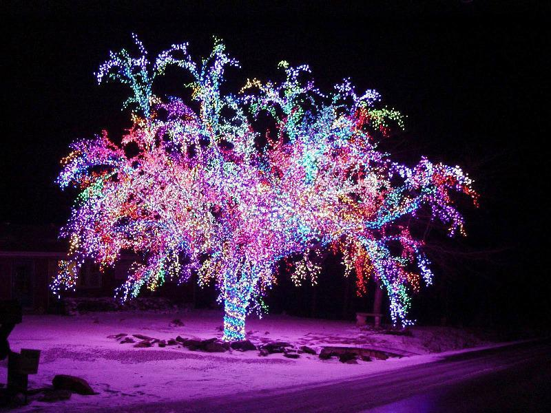 Светодиодные деревья уличные